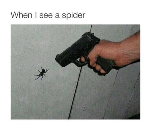meme-gun-when-i-see-a-spider.png