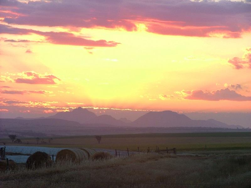sunsetpinkaps.jpg